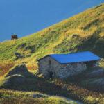 massif du Beaufortain (Savoie, FR)